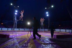 Ciudad de México prohíbe animales en los circos