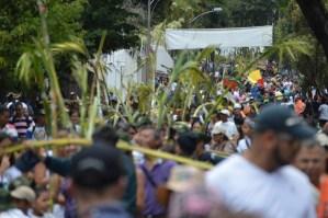 Unesco declara patrimonio cultural e inmaterial de la humanidad a los Palmeros de Chacao