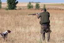 En España, un niño murió tras recibir un disparo durante un ejercicio de caza