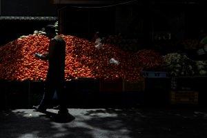 Canasta alimentaria superó los 702 mil bolívares en el mes de marzo