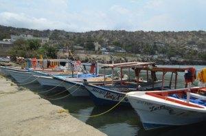 Pescadores de Vargas varados por falta de insumos