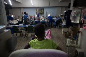 Pacientes renales de La Guaira están propensos a contraer hepatitis C