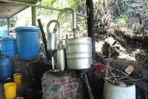 """En Táchira se imponen las bebidas """"espirituosas"""" clandestinas"""