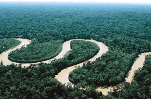 Las claves del proyecto del Arco Minero del Orinoco y qué dicen sus detractores