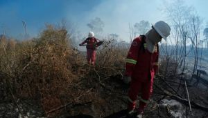 Murieron ahogados tres bomberos voluntarios que combatían los incendios en Bolivia