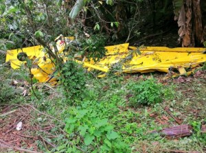 Al menos un muerto y tres heridos al estrellarse una avioneta en El Salvador