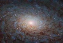 """¿Un portal hacia otra dimensión?: La Nasa  muestra una galaxia """"de ciencia ficción"""" (Foto)"""