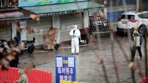 FOTOS: Así es por dentro el mercado donde se habría originado el coronavirus