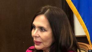 Canciller de Bolivia: Nuestra relación con Juan Guaidó es de mutuo respeto