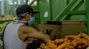 Racionamiento de combustible amenaza con paralizar producción agropecuaria en Bolívar e incrementar escasez