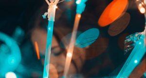 Horror en Alabama: Jóvenes hacen fiestas Covid-19 donde el primer infectado recibe un pago
