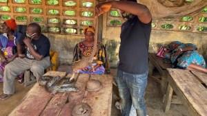 Revelan las deplorables condiciones de un mercado nigeriano donde comercian con animales vivos y muertos