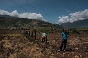 Falta de combustible impide a más de 90% de los productores venezolanos iniciar siembras