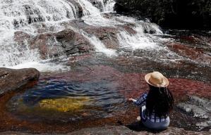 Caño Cristales, el río más bonito del mundo, brilla de nuevo tras la pandemia en Colombia (FOTOS)