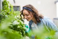 """Vivir en un entorno """"verde"""" retrasa el envejecimiento y prolonga la buena salud"""