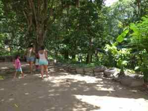 ¡Alerta sanitaria en Carabobo! Más de 50 casos de leishmaniasis en Las Marías de Naguanagua